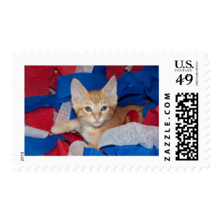 Loki in Red, White & Blue Postage Stamps