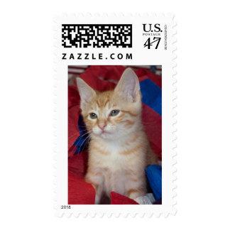 Loki in Red, White & Blue Stamp