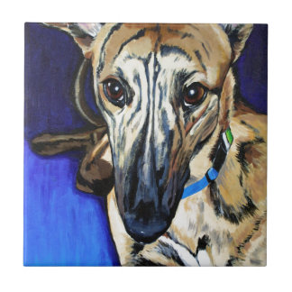 Loki - Lurcher dog Tile