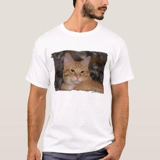 Loki Smirks T-Shirt