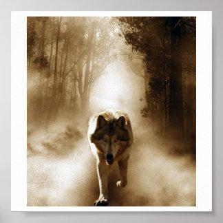 Loki wolfdog poster