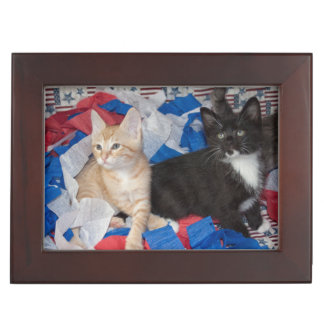 Loki y su Brother en rojo, blanco, y azul Caja De Recuerdos