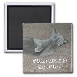 lol cat 2 inch square magnet