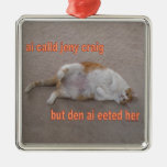 LOL CAT: ai calld jeny craig-but den ai eeted her Ornaments