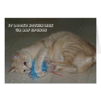 LOL Cat card
