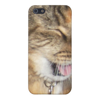 LOL cat funny iPhone Case iPhone 5 Covers