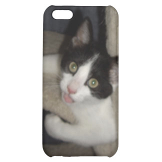 LOL Cats iPhone 5C Covers