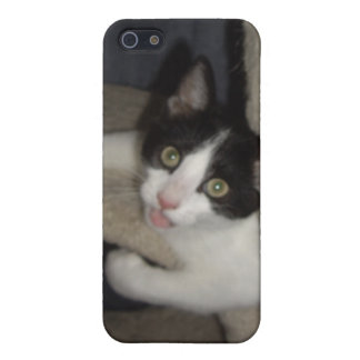 LOL Cats Case For iPhone 5