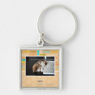 Lol cats with USB Keychain