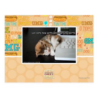 Lol cats with USB Postcard