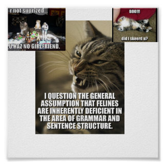 lol-catz-strike-back, boo-did-i-skeerd-u_jpg_th... poster