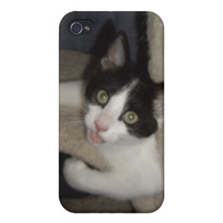 LOL Kitteh! iPhone 4 Case