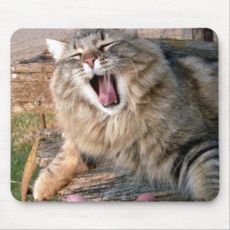 LOL Maine Coon Mouse Pad