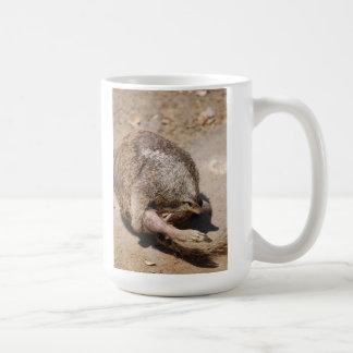 LOL Mog Coffee Mugs