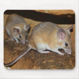 Lol real de Mousepad ....... Tapetes De Ratones