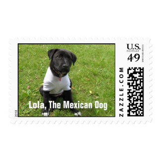 Lola - The Mexican Dog Stamps