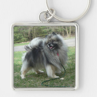 "Lola ""The Perfect Keeshond"" Square Keychain"