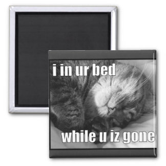 LOLCat 1 2 Inch Square Magnet