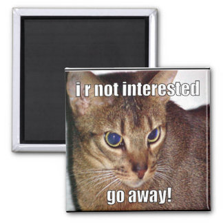 LOLCat 3 2 Inch Square Magnet