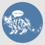 lolcat - i can has? classic round sticker