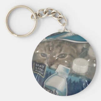 lolcat keychains