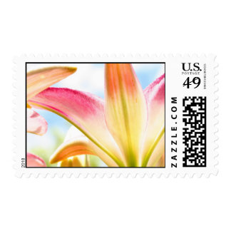 Lollipop Lily 2007 Postage