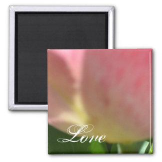 Lollypop Tulip- Love 2 Inch Square Magnet
