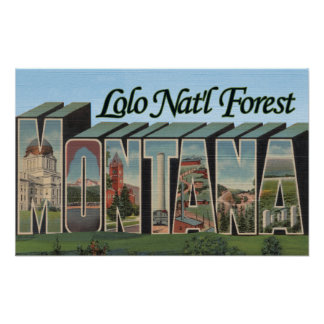 Lolo Nat'l Forest, Montana Poster