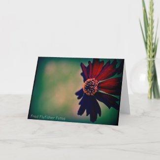 Lomo Daisy Card card