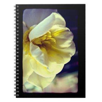 Lomo Narcissus Daffodil fuji_notebook
