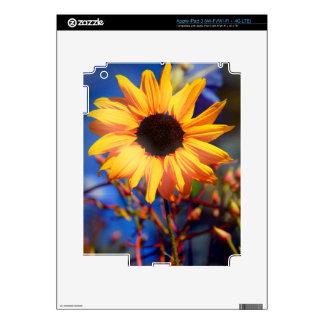 Lomo Sunflower iPad Skin