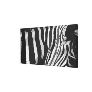 Lona B&W del estampado de zebra Lienzo Envuelto Para Galerías