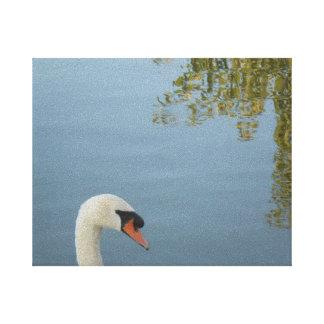 Lona blanca de Streched del cisne Impresiones En Lona