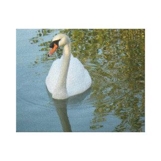 Lona blanca de Streched del cisne y de la laguna Impresiones En Lona Estiradas