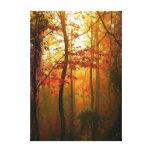 Lona brumosa de la mañana del otoño lona estirada galerías
