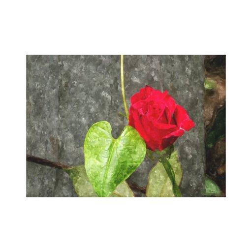 Lona color de rosa de la acuarela lona envuelta para galerías
