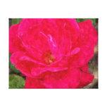 Lona color de rosa impresión en lienzo estirada