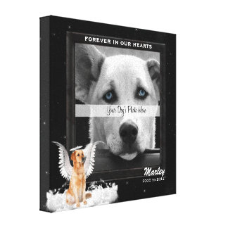 Lona conmemorativa de la foto del mascota del perr impresión en lona estirada
