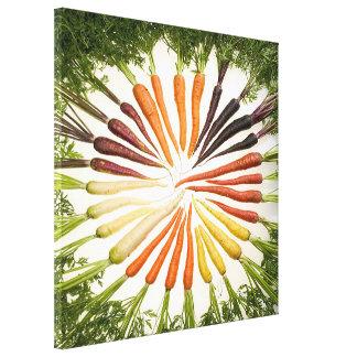Lona cuadrada de las zanahorias multicoloras del a lona envuelta para galerías