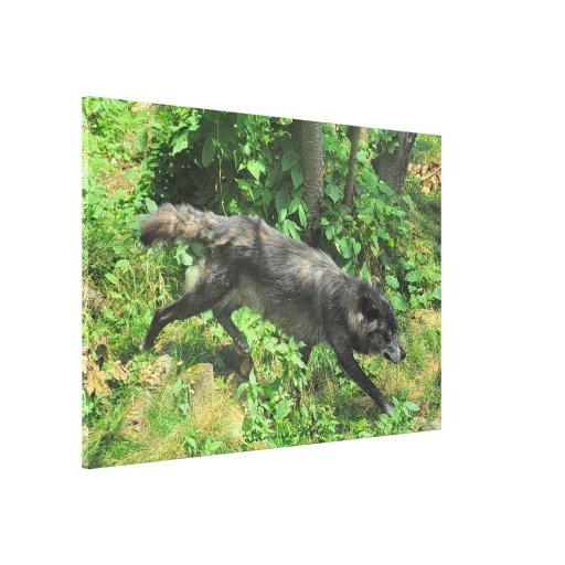 Lona de arte de la fauna del lobo gris del verano impresiones en lona