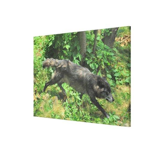 Lona de arte de la fauna del lobo gris del verano impresión en lienzo estirada