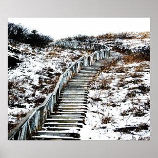 Lona de la escalera Nevado Póster