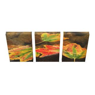 Lona de la fotografía de los 3 paneles de hojas en impresión en tela