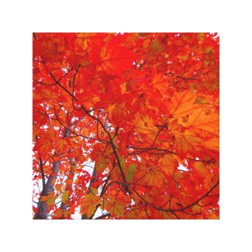 lona de la pared del follaje de otoño impresión en lienzo estirada