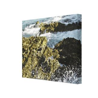 Lona de las Islas Caimán Impresión En Lienzo Estirada
