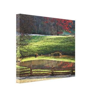 Lona de las reflexiones de la caída impresión en lienzo estirada