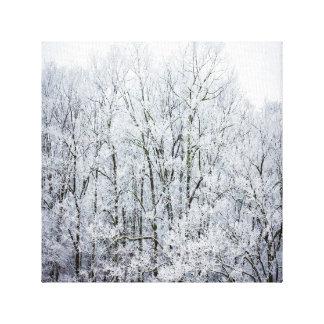 Lona de los árboles del invierno lona estirada galerias