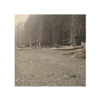 lona de madera con imagen de la playa rocosa cuadro de madera