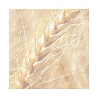 Lona de oro del trigo impresiones en lona