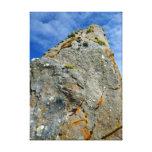 Lona de piedra derecha impresiones en lona